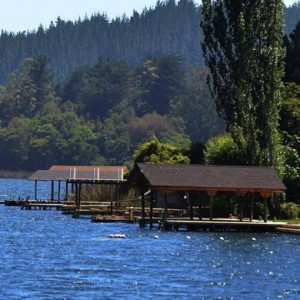 Lago Vichuquen I